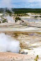 Scenery in the Norris Geyser Basn, Yellowstone National Park, Wyoming
