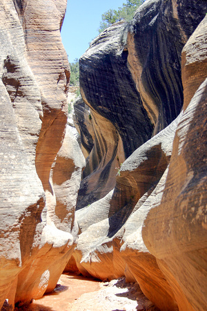 Willis Canyon Slot Scenery, Utah-6
