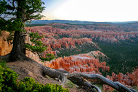 Bryce Canyon National Park Scenery, Utah-28