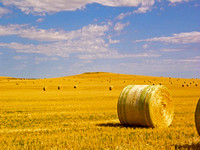 Straw Bales on a North Dakota Stubble Field-2