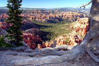 Bryce Canyon National Park Scenery, Utah-32