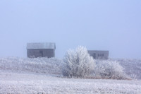 Abandoned Farmstead in a Snowy Fog, Central North Dakota