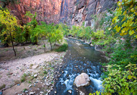 Riverside Walk Scenery, Zion National Park, Utah-2