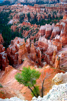 Bryce Canyon National Park Scenery, Utah-25