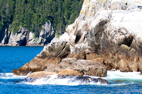 Kenai Fjords National Park Scenery, Alaska-2