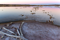 Alkali Marsh at Dusk, Bitter Lake National Wildlife Refuge, New Mexico