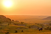Wild horses at sunrise - South Unit of the Theodore Roosevelt National Park-3