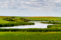 Prairie Scenery, Pothole Country