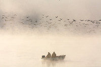 Fishing boat and Canada geese in the fog, Missouri River, North Dakota