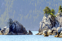 Kenai Fjords National Park Scenery, Alaska-6