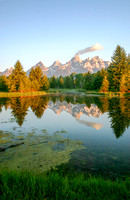 Reflection at Schwabacher's Landing, Grand Teton National Park, Wyoming-9