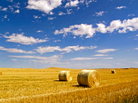 Straw bales on a stubble field, North Dakota-1