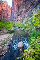 Riverside Walk Scenery, Zion National Park, Utah-2-2