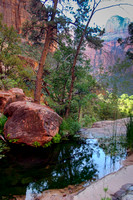 Middle Emerald Pool, Zion National Park, Utah-4