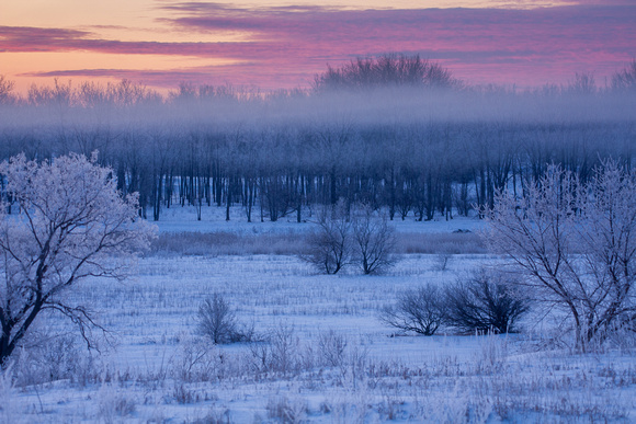 a cold winter morning