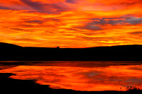 Beautiful Sunset Reflection - North Dakota Marsh-3