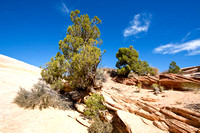 Scenery at Yellow Rock, Grand Staircase - Escalante, Utah-10