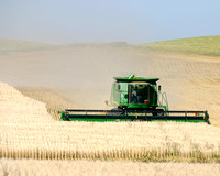 John Deere combine harvesting grain, North Dakota-1
